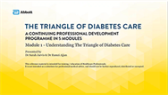 Understanding The Triangle of Diabetes Care